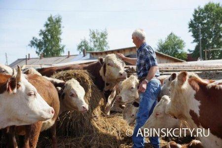 Гранты на развитие ферм