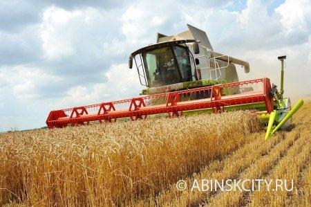 Предоставление грантов начинающим сельскохозяйственным потребительским кооперативам